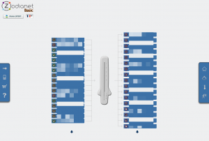 Interface web